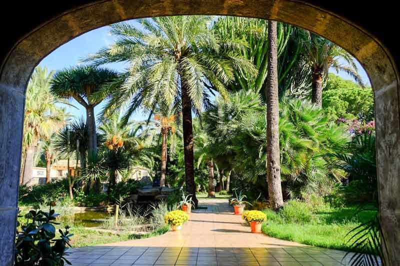Jardín de Open Sky