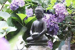 Open Sky House Buddha