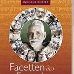 facetten des erwachens, indische meister, john david